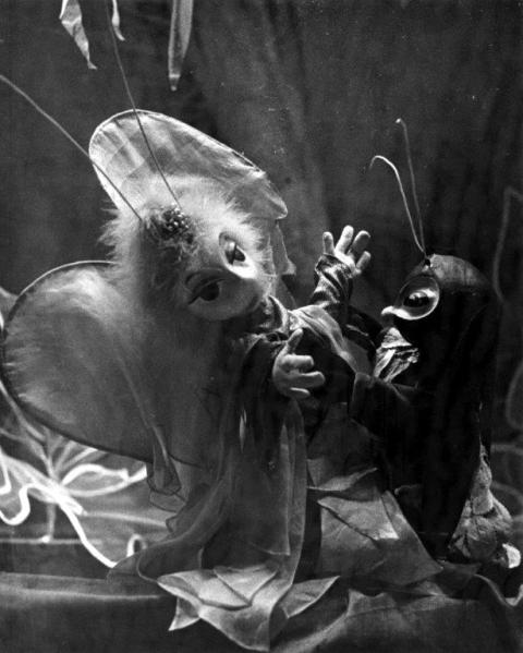 El maleficio de la mariposa. Grupo Nac de Guiñol. Teatro Nac de Guiñol. 15.6.1963. Archivo Fotog