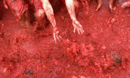 La Tomatina de Buñol o la apoteosis del color rojo