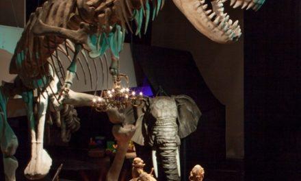 Exposición 'De la caverna al cine: un viaje a través de los títeres', por Títeres Etcétera