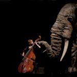 'Soñando el Carnaval de los animales', de Títeres Etcétera: 15 años después, por Irma Borges
